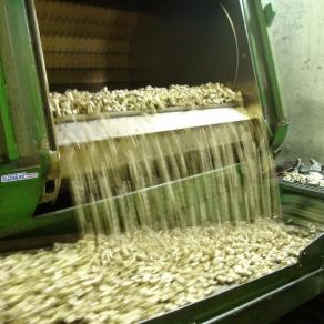 Granigliatrice-a-tappeto-in-acciaio